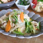 白菜と豚肉の簡単丼